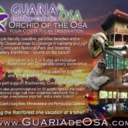 Guaria de Osa Promotional Material